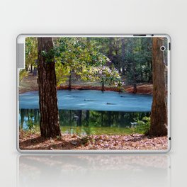 Partially Frozen Duck Pond Laptop & iPad Skin