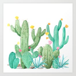 Cactus Cacti Succulent Garden Desert Southwest Art Print