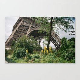 Base Canvas Print