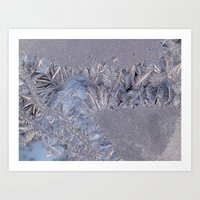 Frost Tracery 1 Art Print