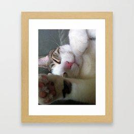 Best Cat that ever lived Framed Art Print