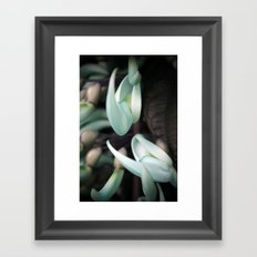 Minty Leaves Framed Art Print