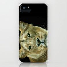 Lioness iPhone (5, 5s) Slim Case