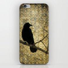 Crow Of Damask iPhone & iPod Skin