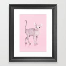 ALBINOCAT Framed Art Print