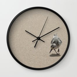 Sandpiper bird on wet sand Wall Clock