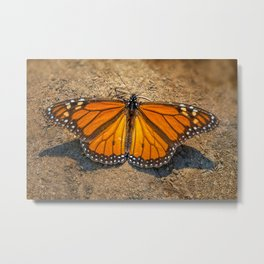 MONARCH OF ALL HE SURVEYS Metal Print
