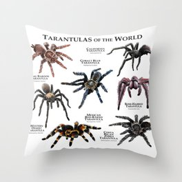 Tarantulas of the World Throw Pillow