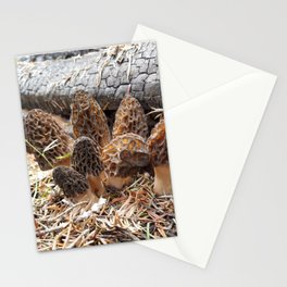 Morel Mushroom Clump Stationery Cards