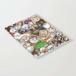 One Hundred Million Ferrets Notebook