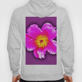 Pink flower on a wintry background Hoody
