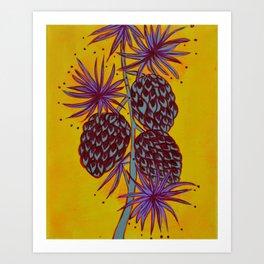Seed Pods - Pinecones Art Print