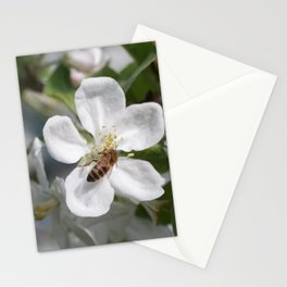 Bee on Mau ApleTree Stationery Cards