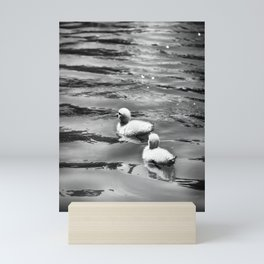 Follow Me II - Black & White Mini Art Print