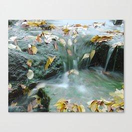 Descending Autumn Canvas Print