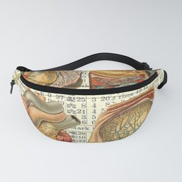 Beautiful Body Parts on Vintage Farmers Almanac page Fanny Pack