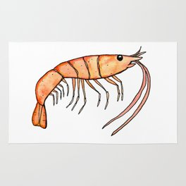 Prawn: Fish of Portugal Rug