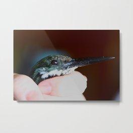 Bird in the Palm Metal Print