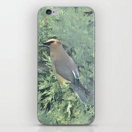 Cedar Waxwing Bird iPhone Skin