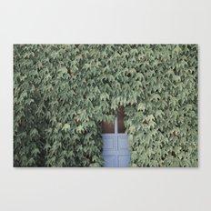 Hidden doors Canvas Print