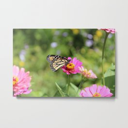 Disappearing Beauty Metal Print