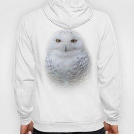 Dreamy Encounter with a Serene Snowy Owl Hoody