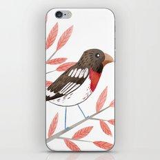 Rose-Breasted Grosbeak iPhone & iPod Skin