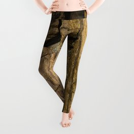 Door into the Cliff Face Leggings