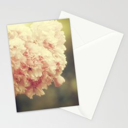 From A Passing Car Stationery Cards