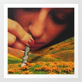 Eschscholzia Californica Art Print