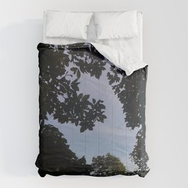 Skylight Comforters