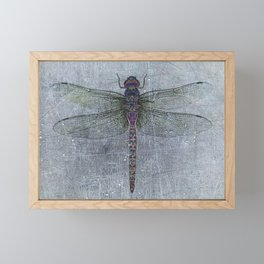 Dragonfly on blue stone and metal background Framed Mini Art Print