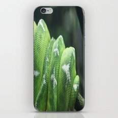 Snake iPhone & iPod Skin