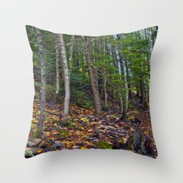 Mt Revelstoke Trail II Throw Pillow