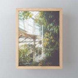 Greenhouse 2 Framed Mini Art Print