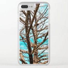 Costa Rica Trees Clear iPhone Case