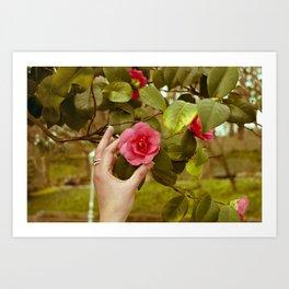 Camellia and hand Art Print