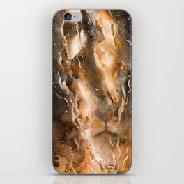 Fire in the Lion iPhone Skin