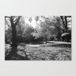 Black and White Treescape Canvas Print