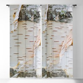 Paper Birch Blackout Curtain
