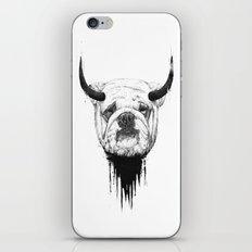 Bulldog iPhone & iPod Skin