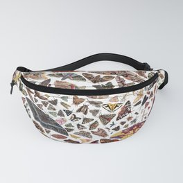 Moths of North America Pattern Fanny Pack
