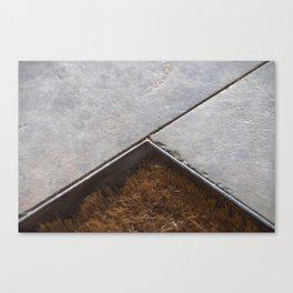 Rug composition Canvas Print