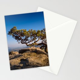 Crooked Tree in Elbe Sandstone Mountains Stationery Cards