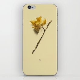 Botanico VII iPhone Skin