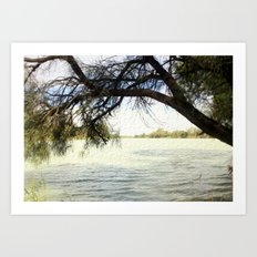 The Murray River - Australia Art Print
