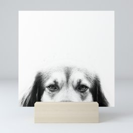 Dog portrait in black & white Mini Art Print