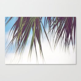 Cabana Life, No. 3 Canvas Print