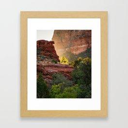 Glowing Tree at Sedona Bell Rock Trail Framed Art Print