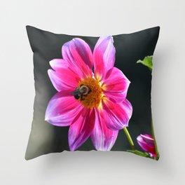 Bee on a Pink Dahlia Throw Pillow